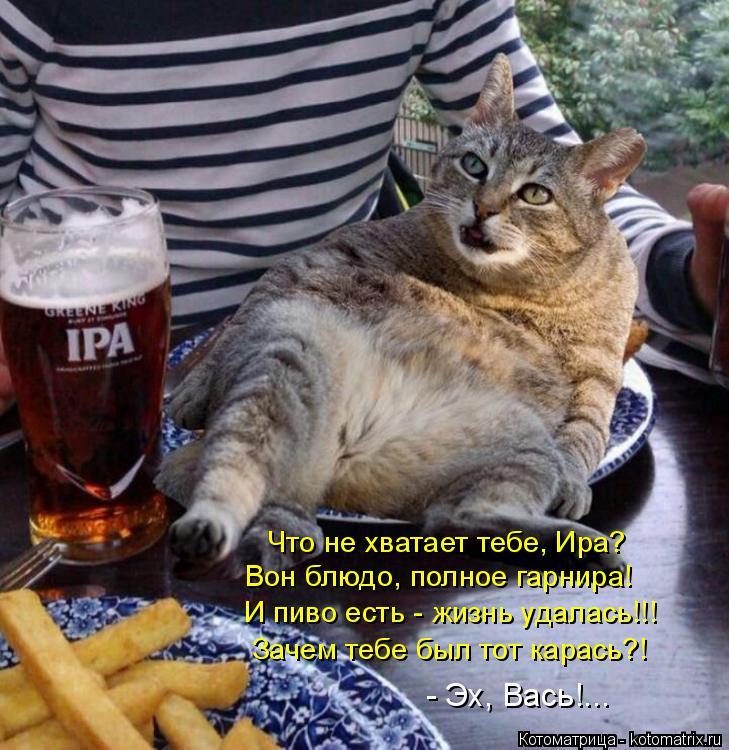 Котоматрица: Что не хватает тебе, Ира? Вон блюдо, полное гарнира! И пиво есть - жизнь удалась!!! Зачем тебе был тот карась?! - Эх, Вась!...