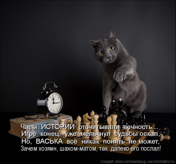 Котоматрица: Часы  ИСТОРИИ  отсчитывали  вечность... Игре  конец,  уже  мелькнул  судьбы оскал, Но,  ВАСЬКА  всё  никак  понять  не может, Зачем хозяин, шахом-м