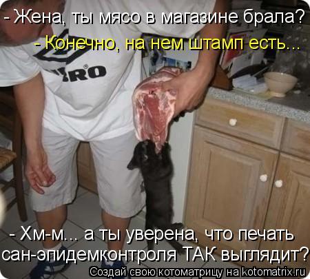 Котоматрица: - Жена, ты мясо в магазине брала? - Конечно, на нем штамп есть... - Хм-м... а ты уверена, что печать сан-эпидемконтроля ТАК выглядит?!
