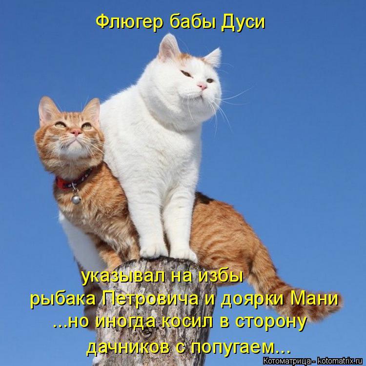 Котоматрица: Флюгер бабы Дуси рыбака Петровича и доярки Мани ...но иногда косил в сторону дачников с попугаем... указывал на избы