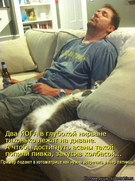 Котоматрица: Два ЙОГА в глубокой нирване тихонько лежат на диване. А чтобы достигнуть асаны такой попили пивка, закусив колбасой... Пример подают в котом