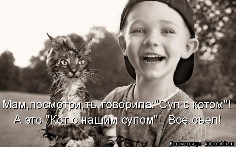 """Котоматрица: Мам,посмотри,ты говорила:""""Суп с котом""""! А это """"Кот с нашим супом""""!  Все съел!"""