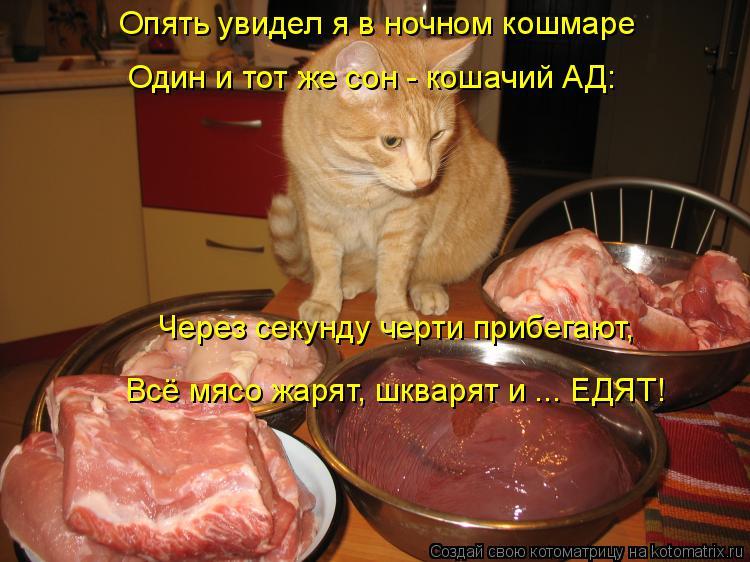 Котоматрица: Опять увидел я в ночном кошмаре Один и тот же сон - кошачий АД: Через секунду черти прибегают, Всё мясо жарят, шкварят и ... ЕДЯТ!