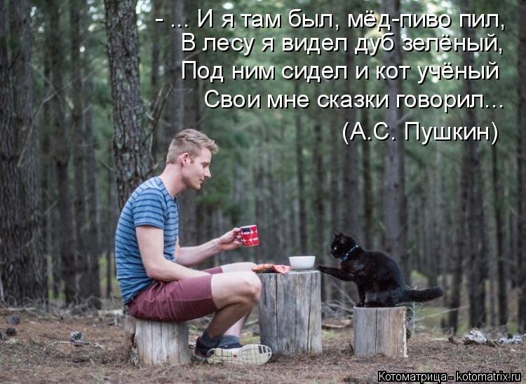 Котоматрица: - ... И я там был, мёд-пиво пил, В лесу я видел дуб зелёный, Под ним сидел и кот учёный Свои мне сказки говорил...  (А.С. Пушкин)