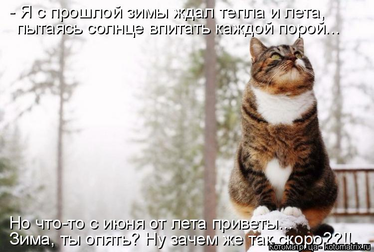 Котоматрица: - Я с прошлой зимы ждал тепла и лета, пытаясь солнце впитать каждой порой...  Но что-то с июня от лета приветы...  Зима, ты опять? Ну зачем же так с
