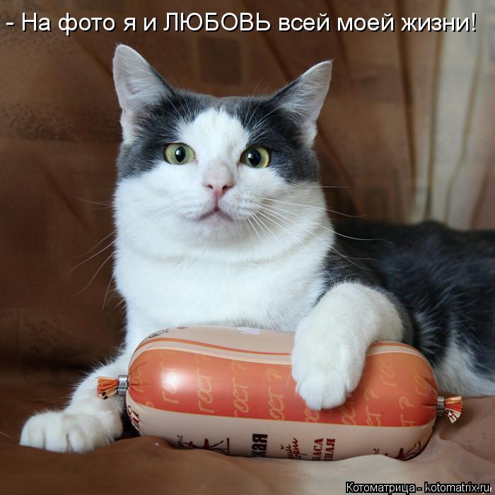 Котоматрица: - На фото я и ЛЮБОВЬ всей моей жизни!