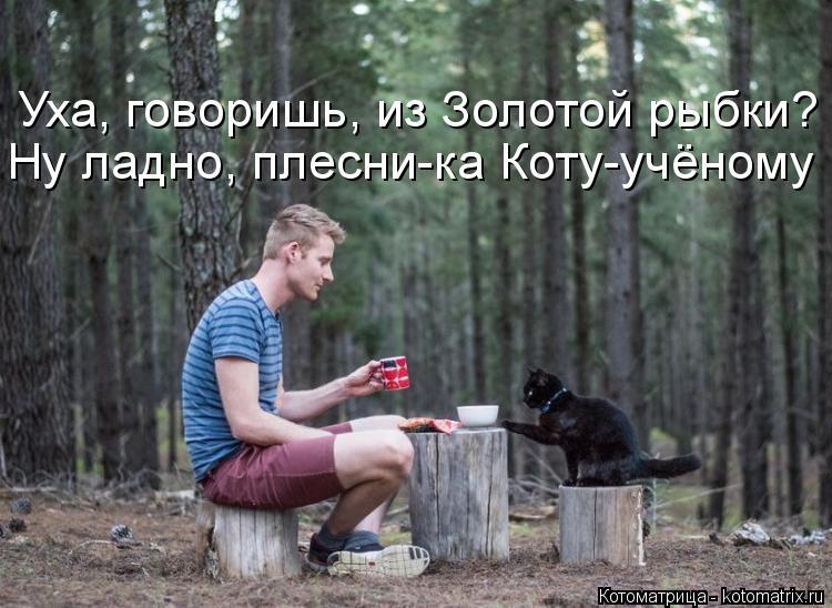 Котоматрица: Уха, говоришь, из Золотой рыбки? Ну ладно, плесни-ка Коту-учёному