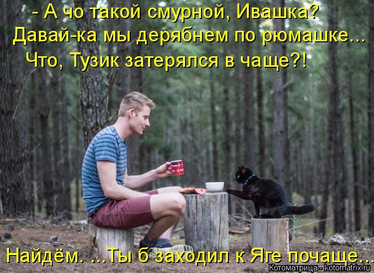 Котоматрица: - А чо такой смурной, Ивашка? Давай-ка мы дерябнем по рюмашке... Что, Тузик затерялся в чаще?! Найдём. ...Ты б заходил к Яге почаще...