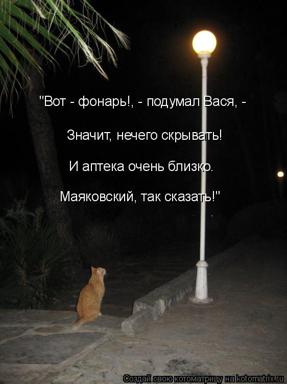 """Котоматрица: """"Вот - фонарь!, - подумал Вася, -  Значит, нечего скрывать! И аптека очень близко. Маяковский, так сказать!"""""""
