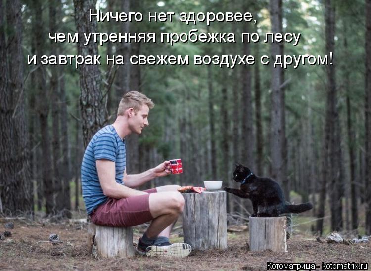 Котоматрица: Ничего нет здоровее, чем утренняя пробежка по лесу и завтрак на свежем воздухе с другом!