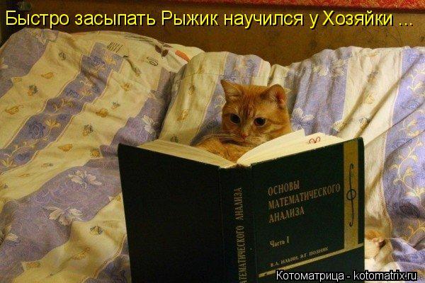 Котоматрица: Быстро засыпать Рыжик научился у Хозяйки ...