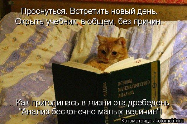 """Котоматрица: Проснуться. Встретить новый день. Окрыть учебник, в общем, без причин. ...Как пригодилась в жизни эта дребедень: """"Анализ бесконечно малых вели"""