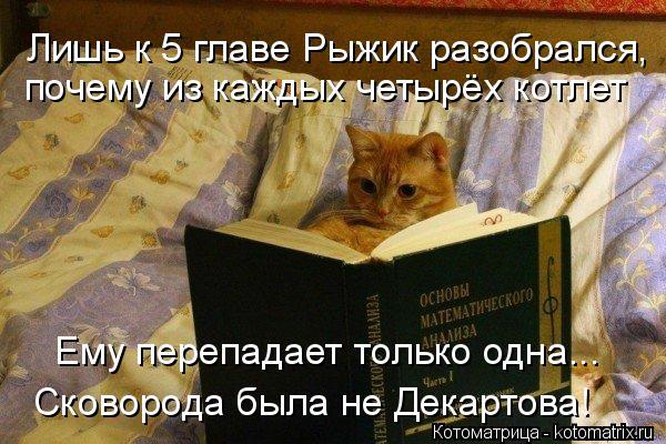 Котоматрица: Лишь к 5 главе Рыжик разобрался,  почему из каждых четырёх котлет Ему перепадает только одна... Сковорода была не Декартова!