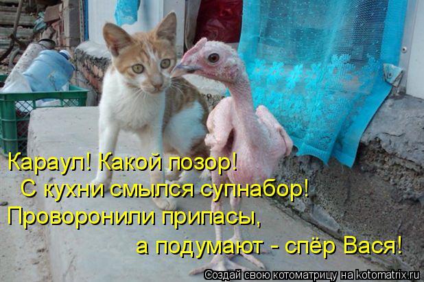 Котоматрица: Караул! Какой позор! С кухни смылся супнабор! Проворонили припасы, а подумают - спёр Вася!