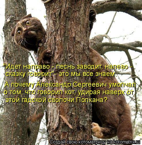 """Котоматрица: А почему Александр Сергеевич умолчал  """"Идет направо - песнь заводит, налево -  сказку говорит""""- это мы все знаем. о том, что говорил кот, удирая"""