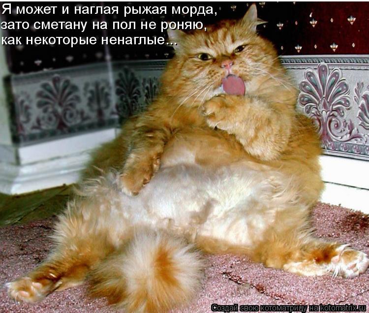 Котоматрица: Я может и наглая рыжая морда, зато сметану на пол не роняю, как некоторые ненаглые...