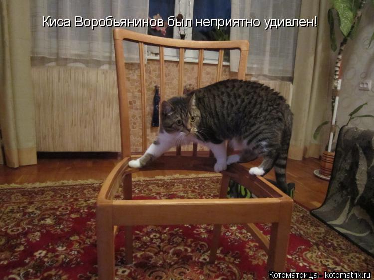 Котоматрица: Киса Воробьянинов был неприятно удивлен!