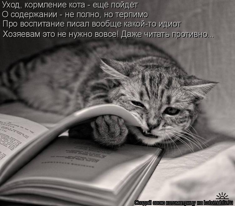 Котоматрица: Уход, кормление кота - ещё пойдёт О содержании - не полно, но терпимо Про воспитание писал вообще какой-то идиот Хозяевам это не нужно вовсе!