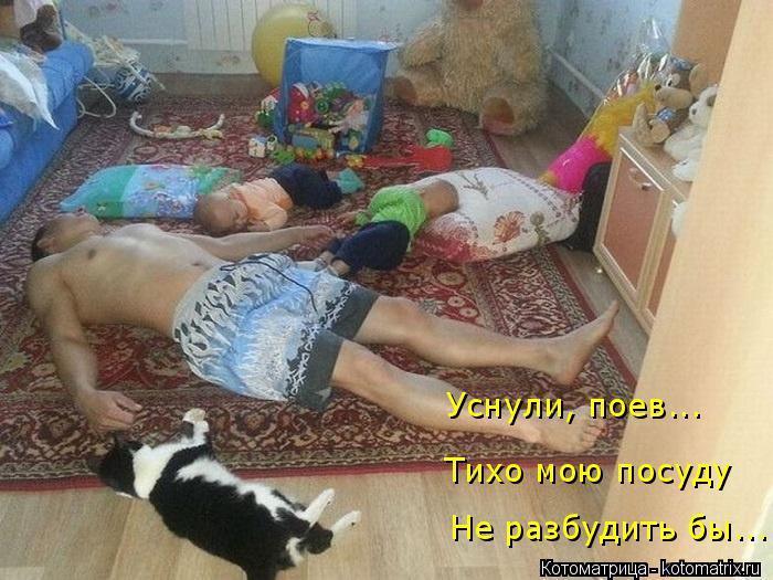 Котоматрица: Не разбудить бы... Тихо мою посуду Уснули, поев...