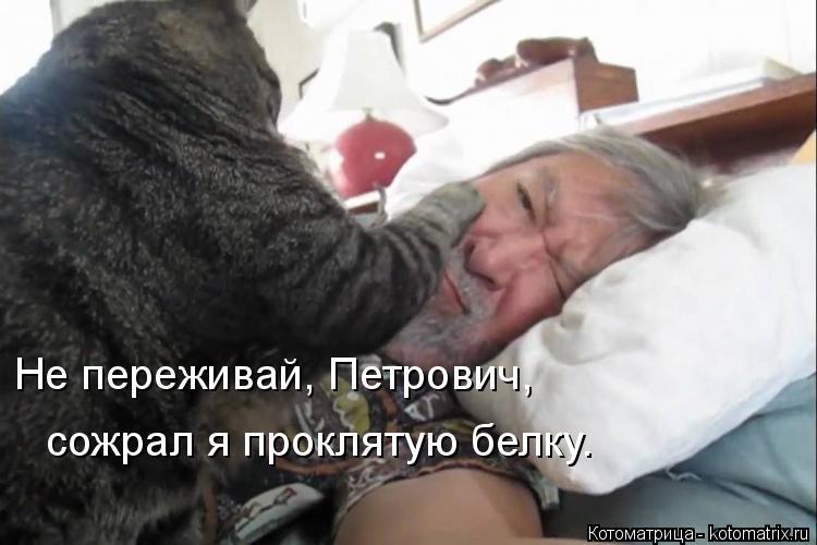 Котоматрица: Не переживай, Петрович,  сожрал я проклятую белку.