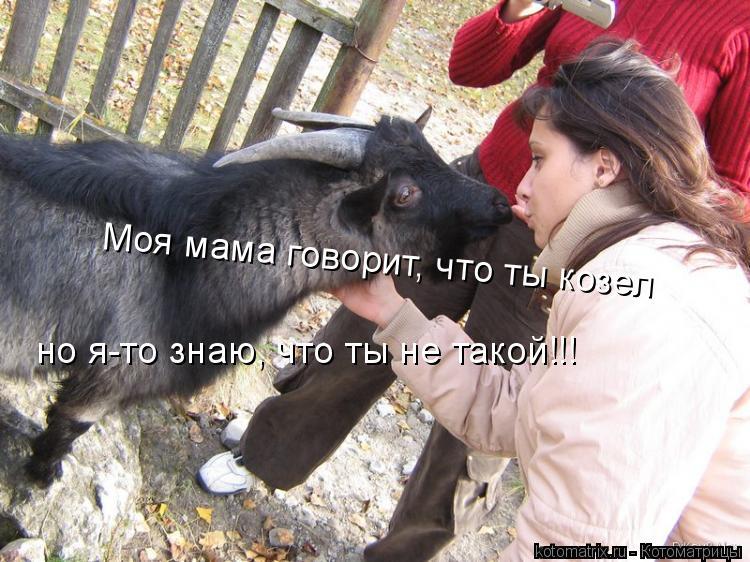 Котоматрица: Моя мама говорит, что ты козел но я-то знаю, что ты не такой!!!