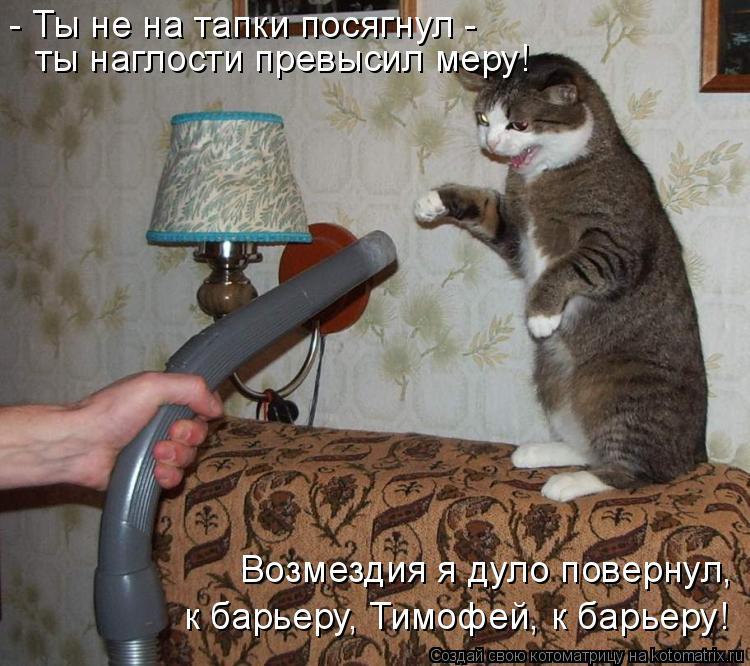 Котоматрица: Возмездия я дуло повернул, к барьеру, Тимофей, к барьеру! - Ты не на тапки посягнул - ты наглости превысил меру!