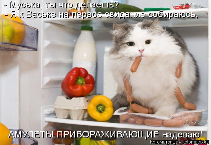 Котоматрица: - Муська, ты что делаешь? - Я к Ваське на первое свидание собираюсь, АМУЛЕТЫ ПРИВОРАЖИВАЮЩИЕ надеваю!