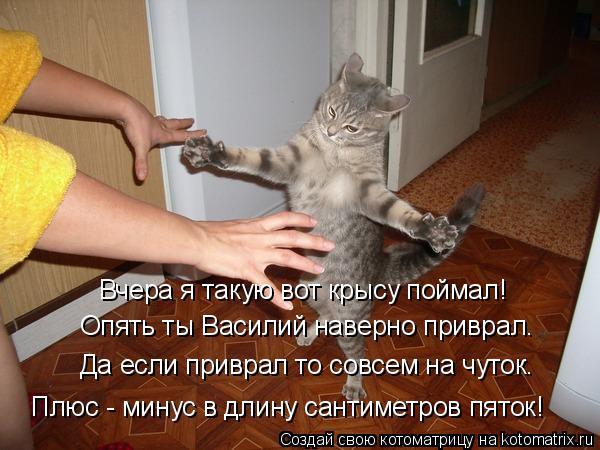 Котоматрица: Вчера я такую вот крысу поймал! Опять ты Василий наверно приврал. Да если приврал то совсем на чуток. Плюс - минус в длину сантиметров пяток!