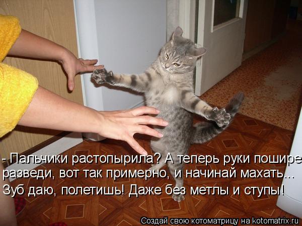 Котоматрица: - Пальчики растопырила? А теперь руки пошире разведи, вот так примерно, и начинай махать... Зуб даю, полетишь! Даже без метлы и ступы!