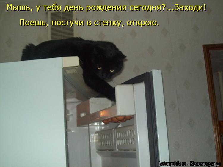 Котоматрица: Мышь, у тебя день рождения сегодня?...Заходи! Поешь, постучи в стенку, открою.