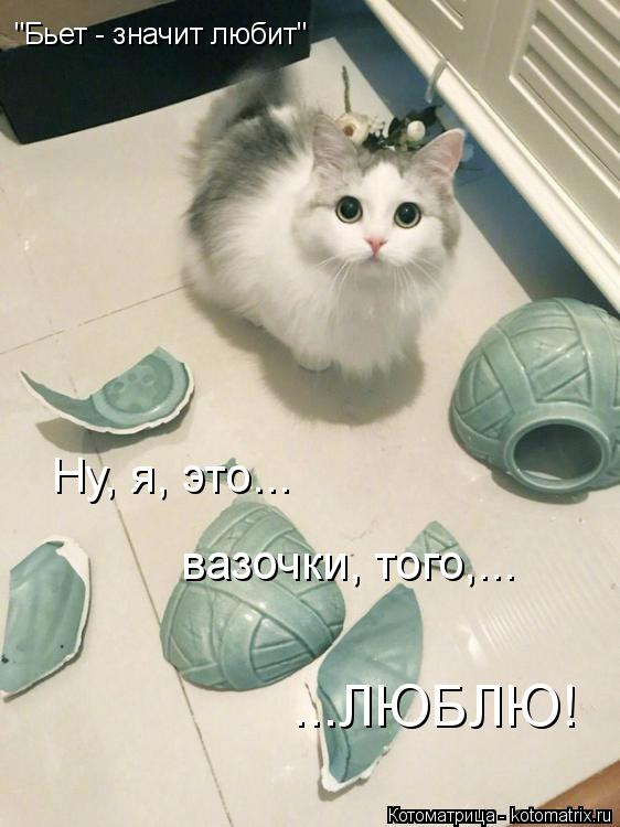 """Котоматрица: """"Бьет - значит любит"""" Ну, я, это... вазочки, того,... ...ЛЮБЛЮ!"""