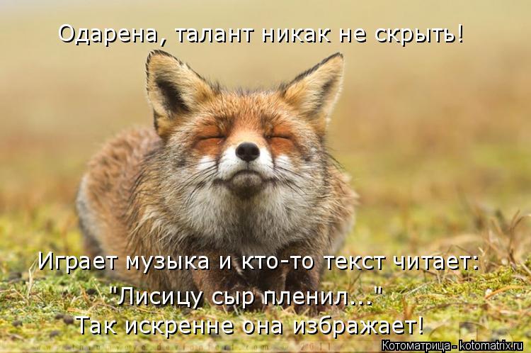 """Котоматрица: Одарена, талант никак не скрыть! Играет музыка и кто-то текст читает: """"Лисицу сыр пленил...""""  Так искренне она избражает!"""