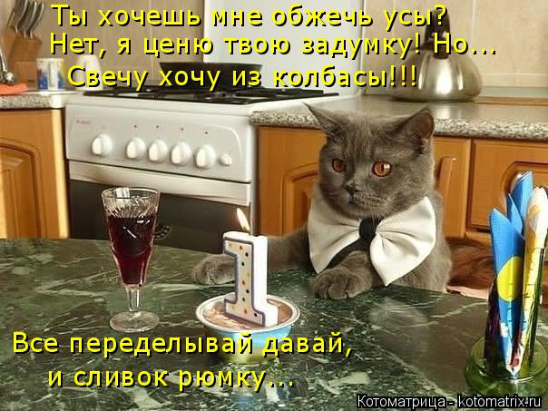 Котоматрица: Ты хочешь мне обжечь усы? Нет, я ценю твою задумку! Но... Свечу хочу из колбасы!!! Все переделывай давай, и сливок рюмку...
