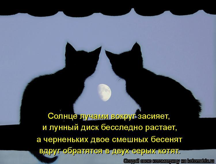 Котоматрица: Солнце лучами вокруг засияет, и лунный диск бесследно растает, а черненьких двое смешных бесенят вдруг обратятся в двух серых котят.