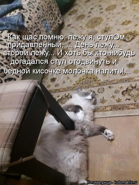 Котоматрица: - Как щас помню: лежу я, стулОм придавленный, ... День лежу... второй лежу... И хоть бы кто-нибудь догадался стул отодвинуть и  бедной кисочке мол