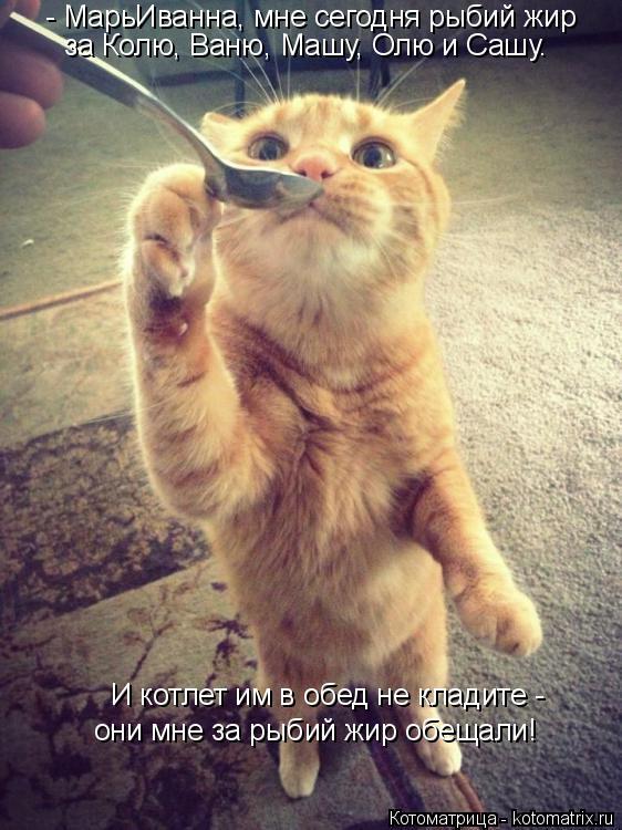 Котоматрица: - МарьИванна, мне сегодня рыбий жир за Колю, Ваню, Машу, Олю и Сашу.  И котлет им в обед не кладите -  они мне за рыбий жир обещали!