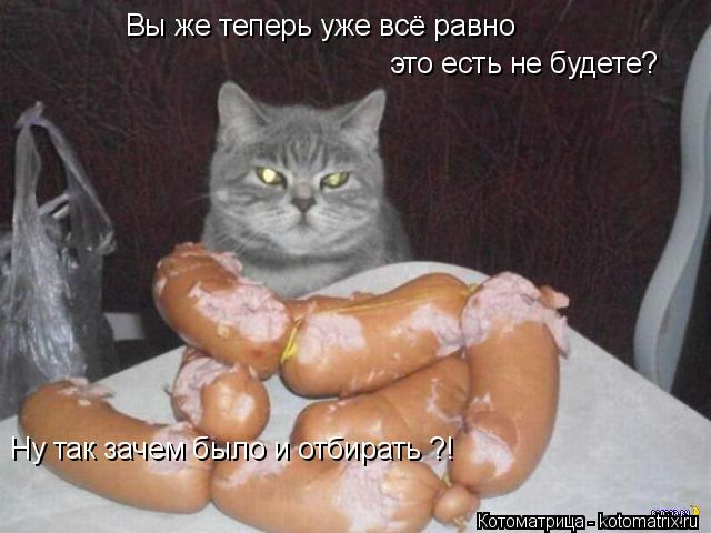 Котоматрица: Вы же теперь уже всё равно это есть не будете? Ну так зачем было и отбирать ?!