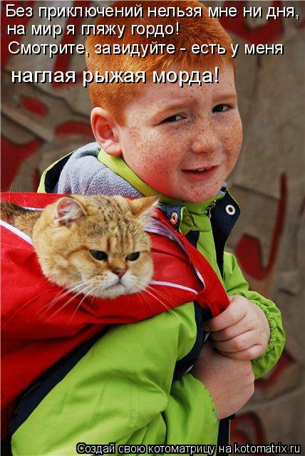 Котоматрица: Без приключений нельзя мне ни дня,  на мир я гляжу гордо! Смотрите, завидуйте - есть у меня наглая рыжая морда!
