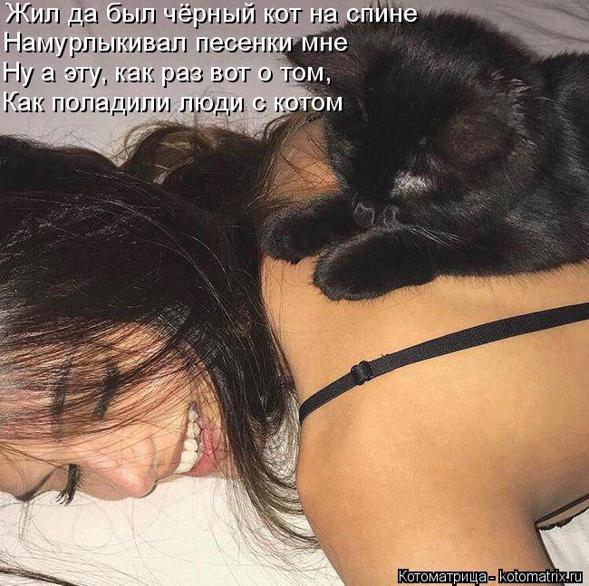 Котоматрица: Жил да был чёрный кот на спине Намурлыкивал песенки мне Ну а эту, как раз вот о том, Как поладили люди с котом