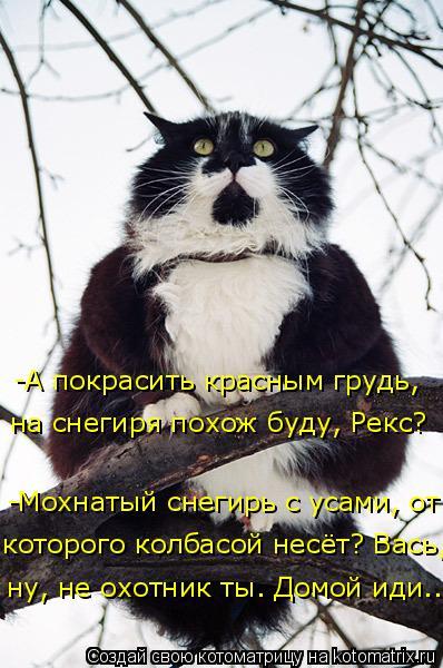 Котоматрица: -А покрасить красным грудь,  ну, не охотник ты. Домой иди... -Мохнатый снегирь с усами, от которого колбасой несёт? Вась, на снегиря похож буду,