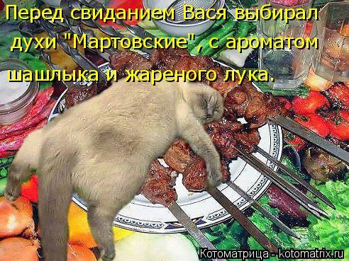 """Котоматрица: Перед свиданием Вася выбирал шашлыка и жареного лука.  духи """"Мартовские"""", с ароматом"""