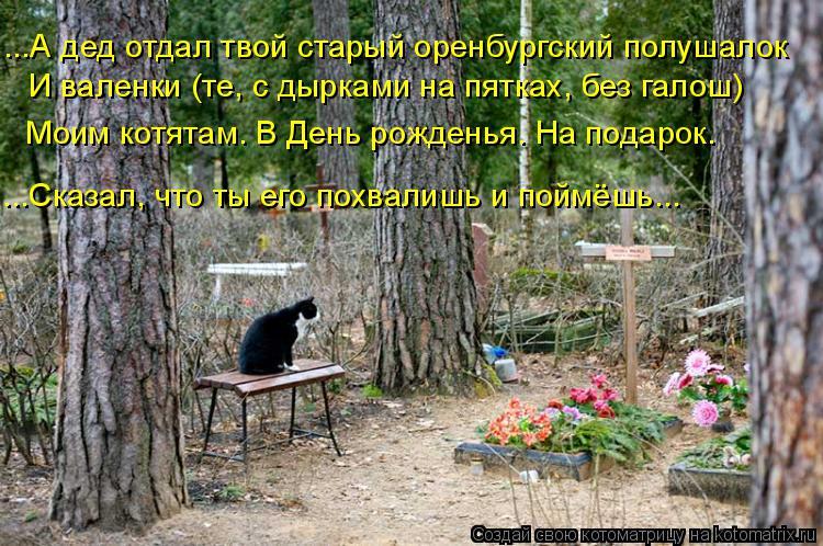 Котоматрица: ...А дед отдал твой старый оренбургский полушалок И валенки (те, с дырками на пятках, без галош) Моим котятам. В День рожденья. На подарок. ...Ск