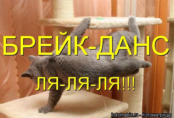 Котоматрица: БРЕЙК-ДАНС ЛЯ-ЛЯ-ЛЯ!!!