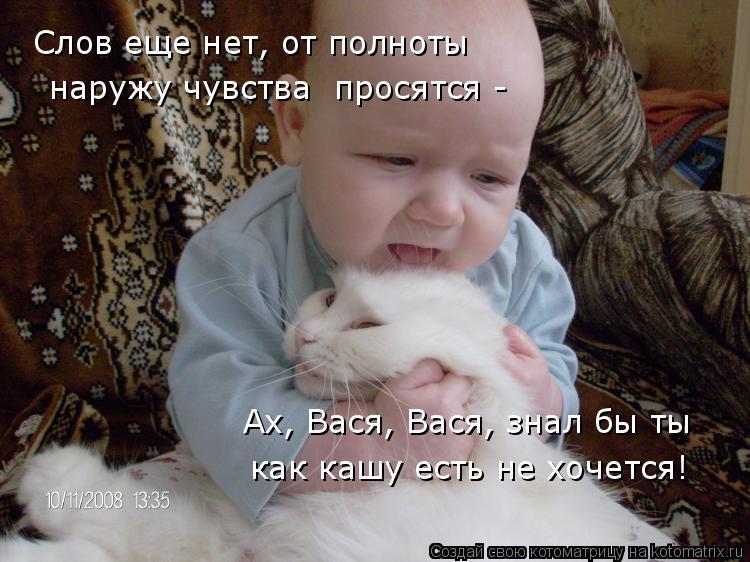 Котоматрица: Ах, Вася, Вася, знал бы ты  как кашу есть не хочется! Слов еще нет, от полноты   наружу чувства  просятся -