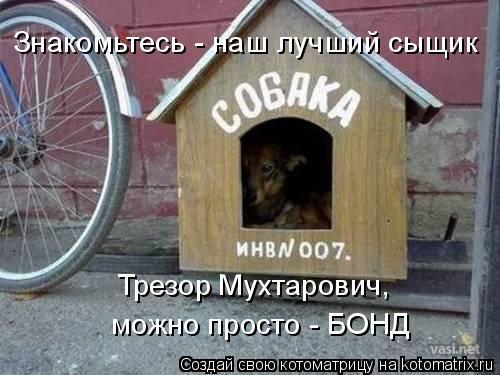 Котоматрица: Знакомьтесь - наш лучший сыщик Трезор Мухтарович, можно просто - БОНД