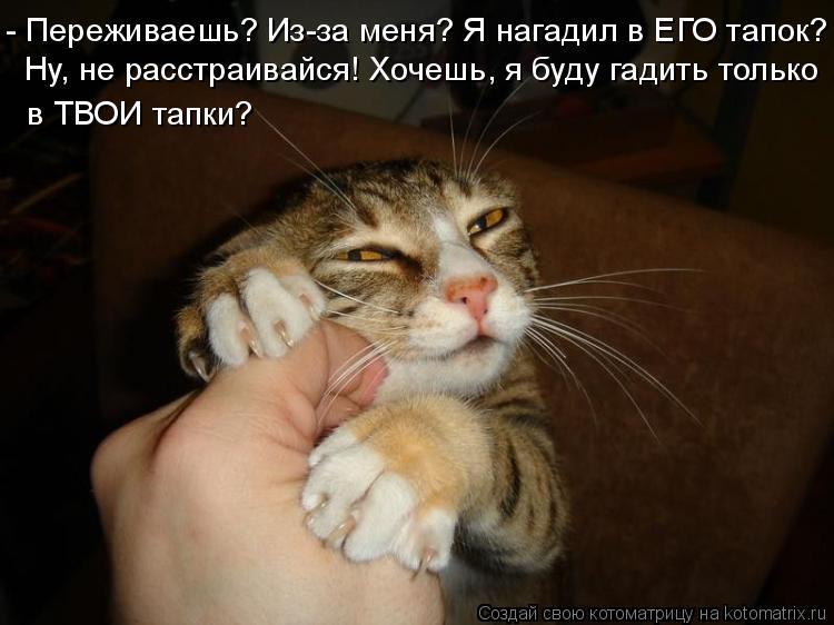 Котоматрица: - Переживаешь? Из-за меня? Я нагадил в ЕГО тапок? Ну, не расстраивайся! Хочешь, я буду гадить только  в ТВОИ тапки?