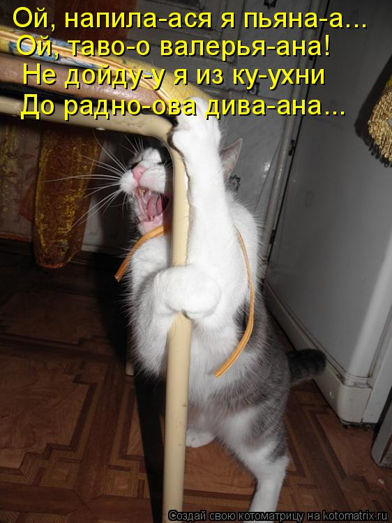 Котоматрица: Ой, напила-ася я пьяна-а... Ой, таво-о валерья-ана! Не дойду-у я из ку-ухни До радно-ова дива-ана...