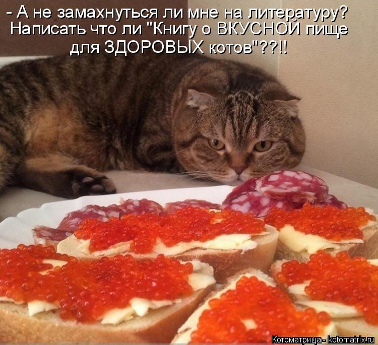 """Котоматрица: - А не замахнуться ли мне на литературу?  для ЗДОРОВЫХ котов""""??!! Написать что ли """"Книгу о ВКУСНОЙ пище"""