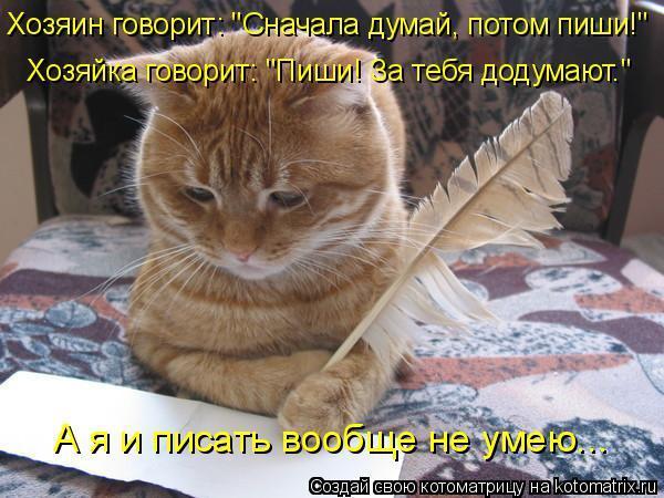 """Котоматрица: Хозяин говорит: """"Сначала думай, потом пиши!"""" Хозяйка говорит: """"Пиши! За тебя додумают."""" А я и писать вообще не умею..."""