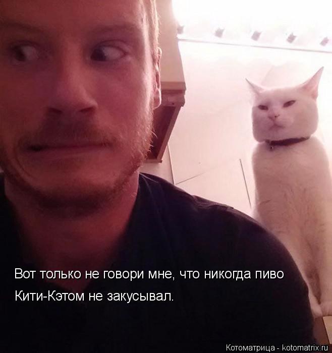 Котоматрица: Вот только не говори мне, что никогда пиво  Кити-Кэтом не закусывал.
